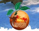 Apelsintour